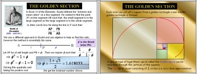 Golden Ratio / Section